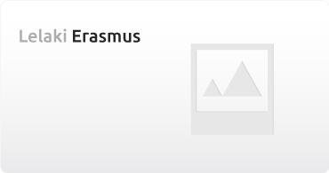 Lelaki Erasmus